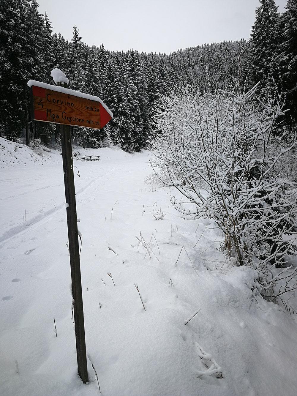 borno itinerario skialp