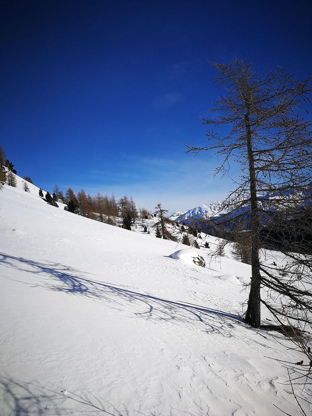 escursione splitboard val engadina