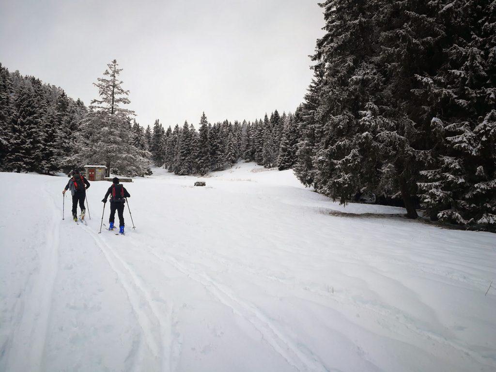 montealtissimo ski alp