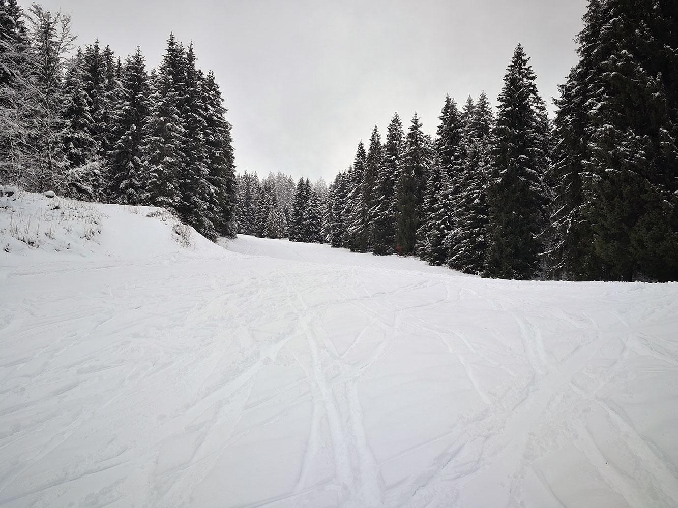 splitboard valcamonica
