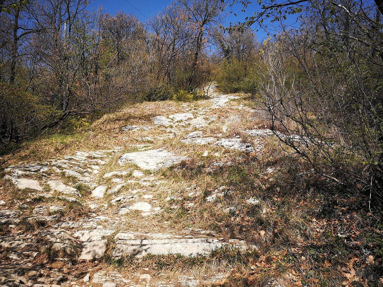 trail-running-monta-misma