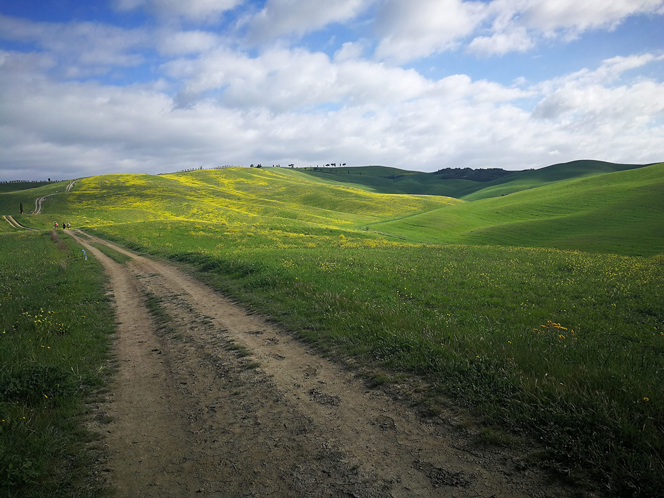 tuscany-crossing-trail-running