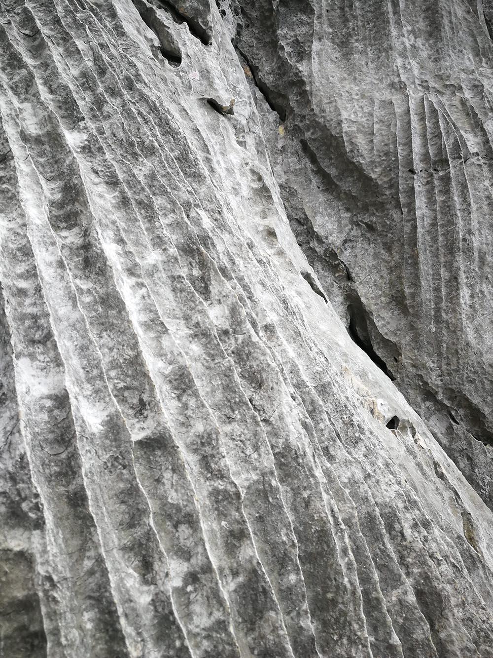 roccia calcarea