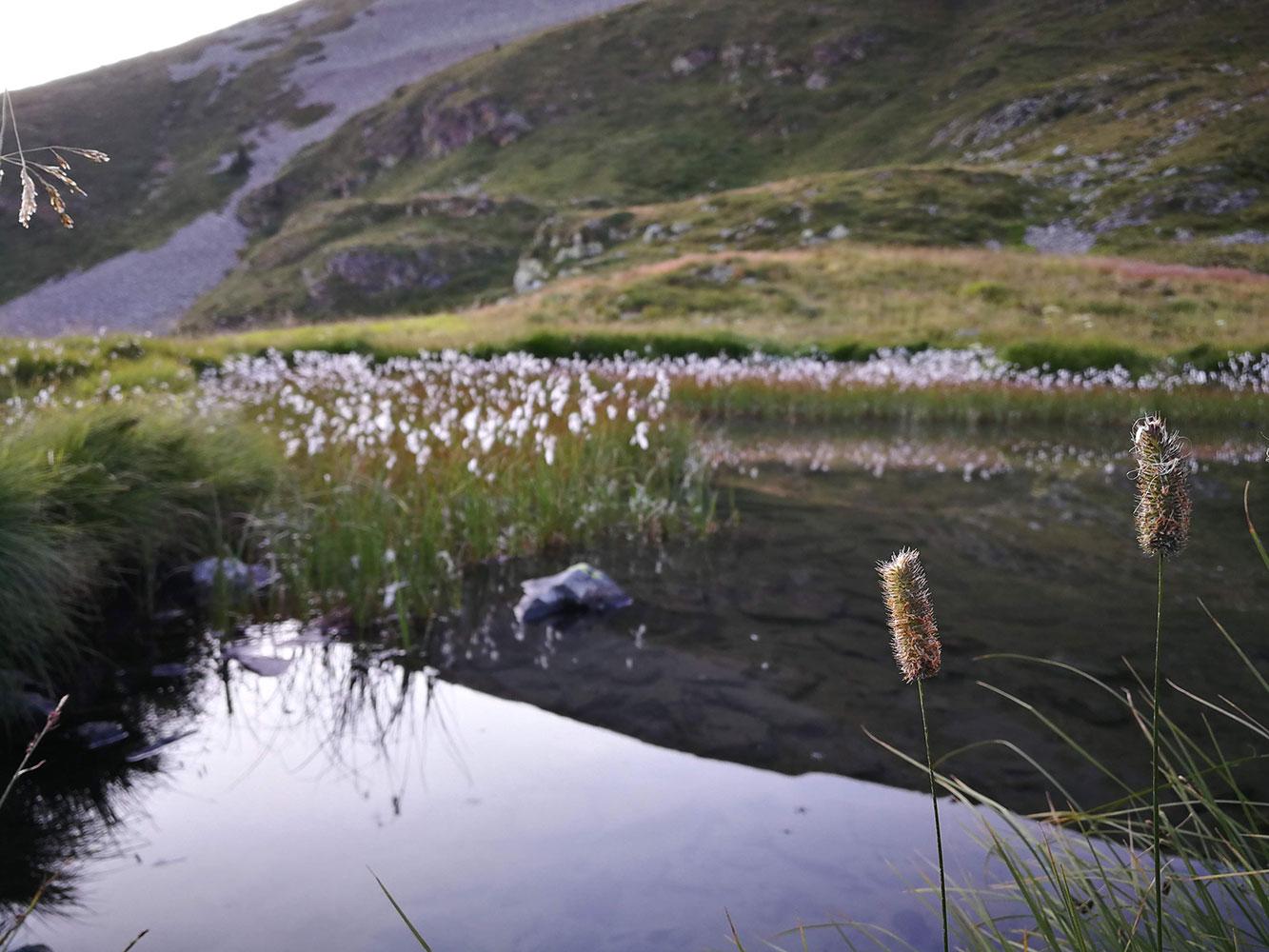 lago-delle-trote-foppolo