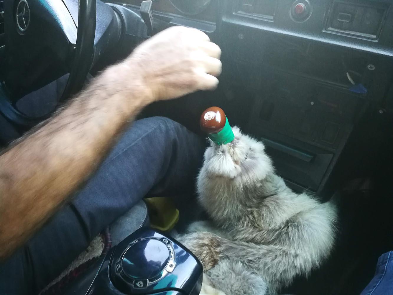 taxi yerevan