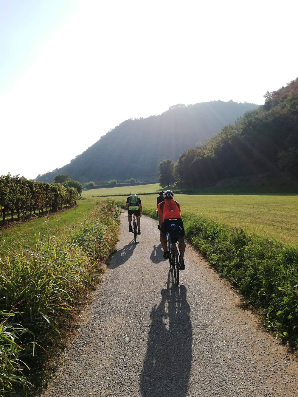 escursione in bici franciacorta