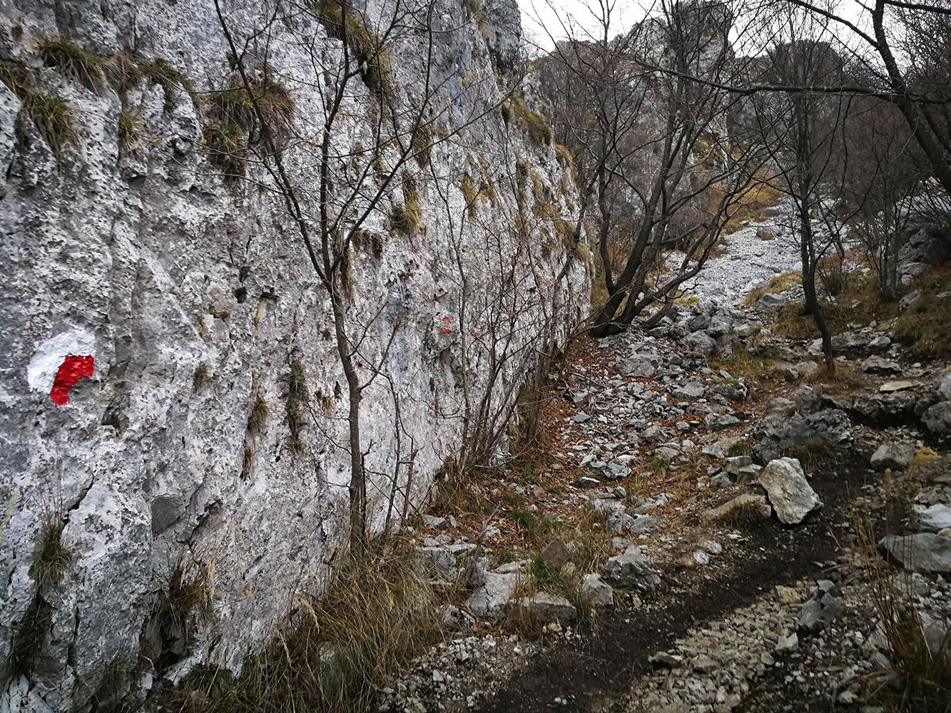 salita-monte-linzone