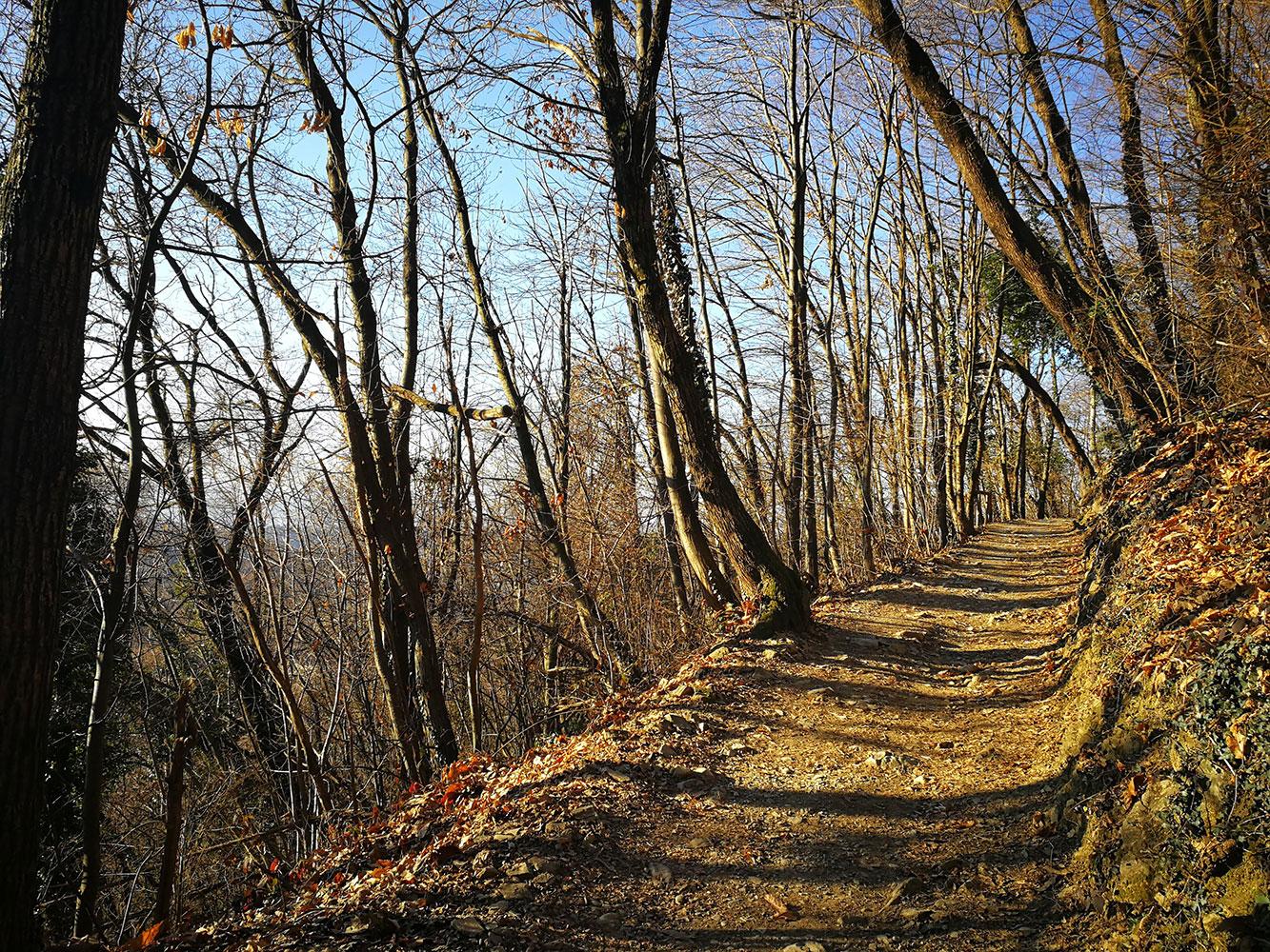 trekking canto alto bergamo
