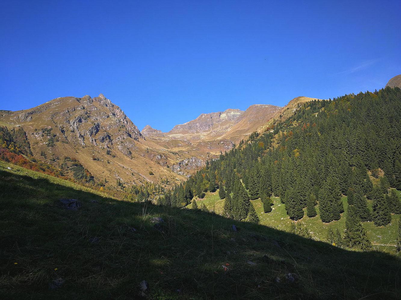 bioma alpino alta montagna
