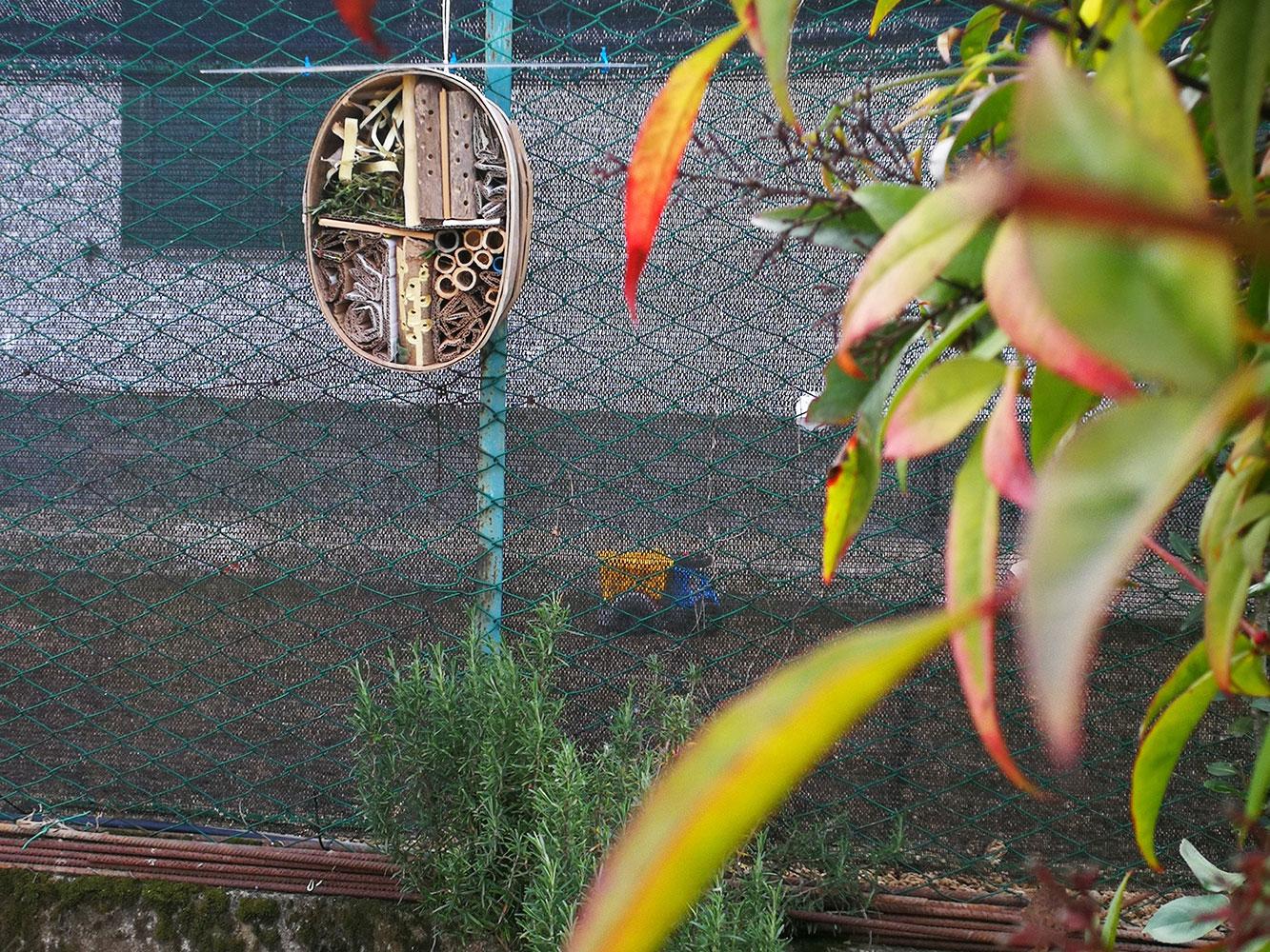 bug hotel ricovero per api solitarie ed insetti