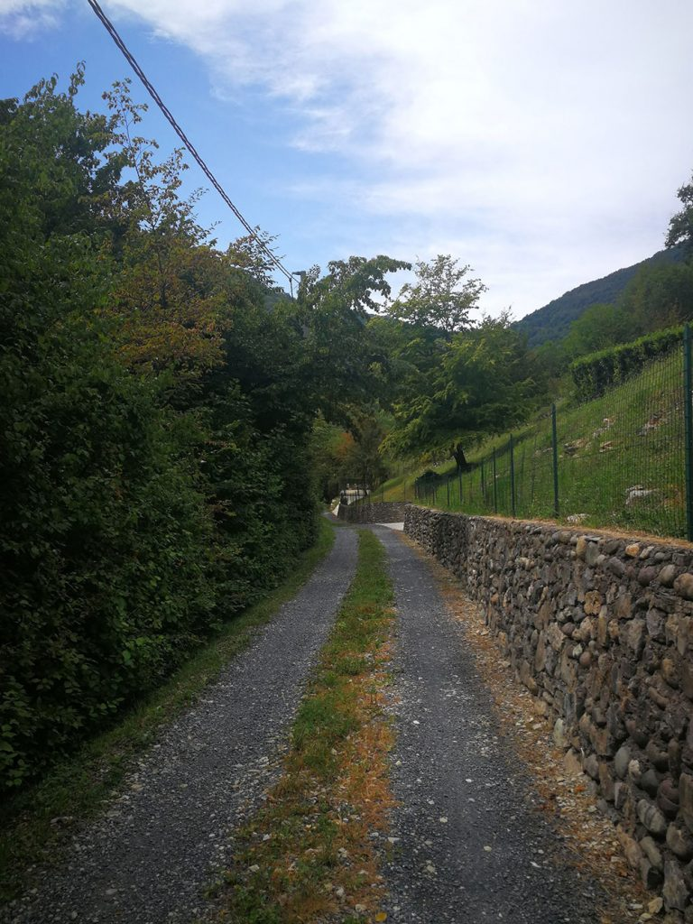 luzzana escursione monte misma