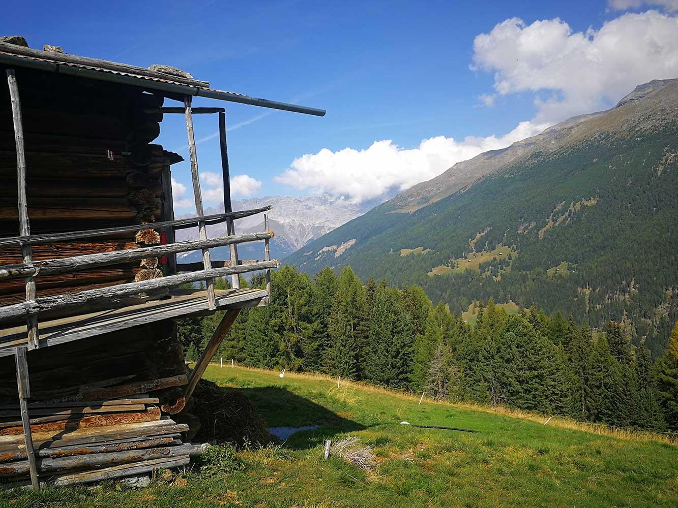 escursioni trekking bormio