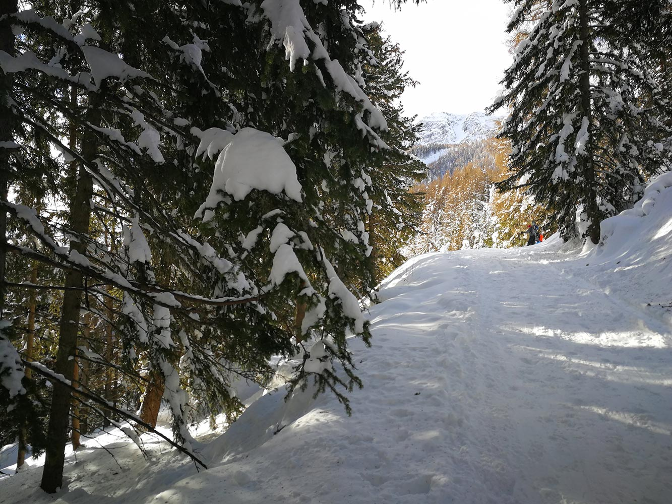monte masucco escursion splitboard