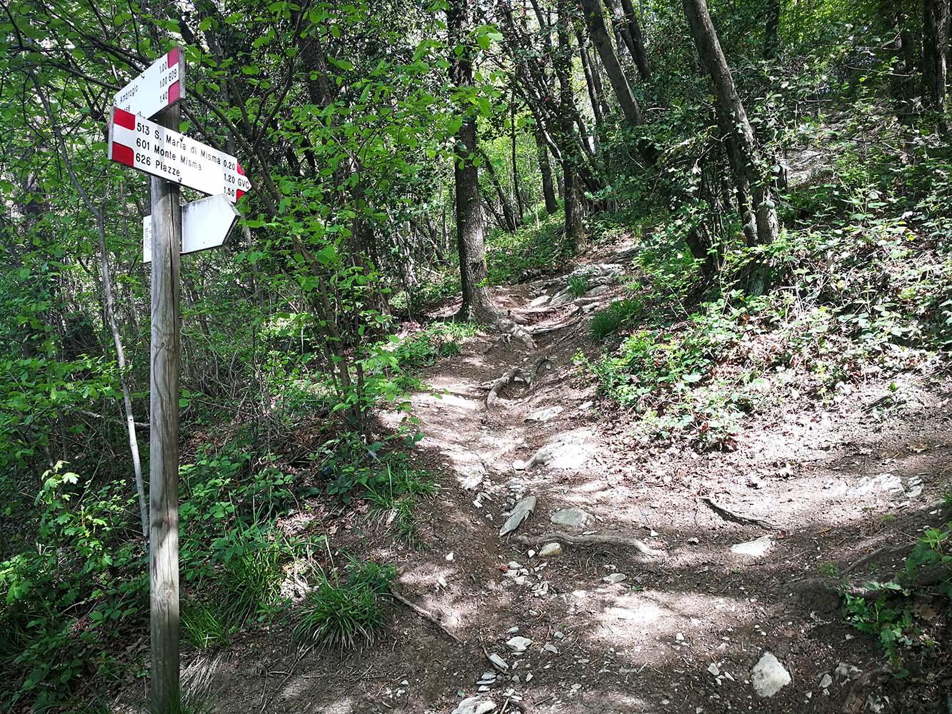 sentieri del monte misma