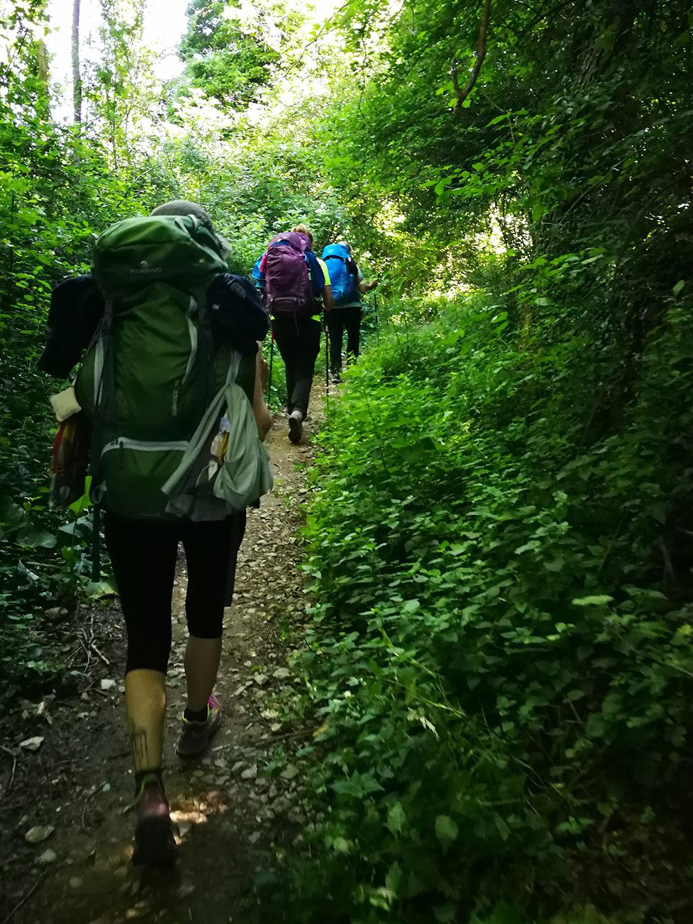 sentiero-tagliaferro