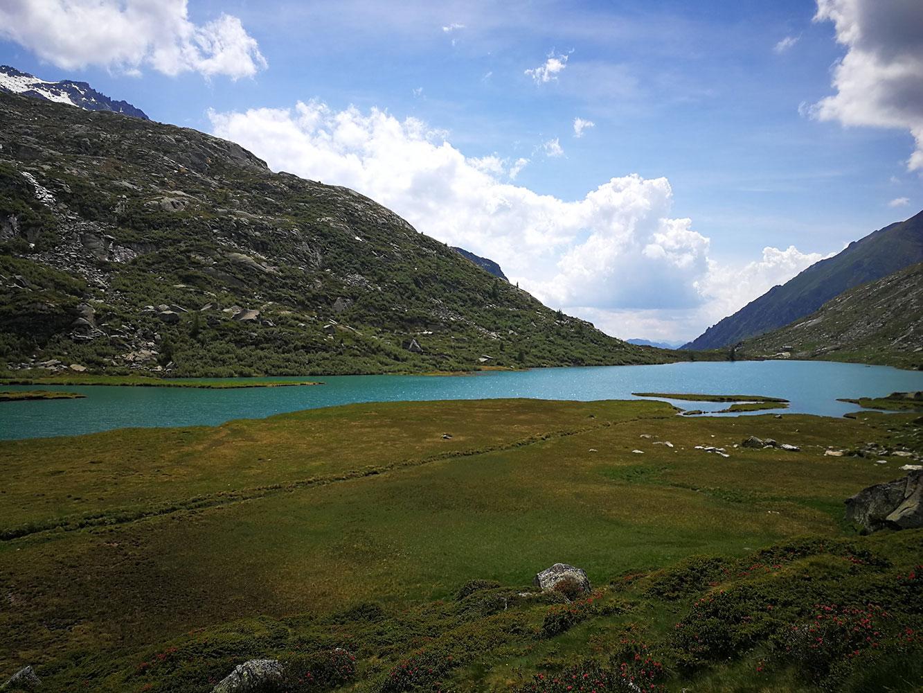 torbiera-alpina-val-salarno